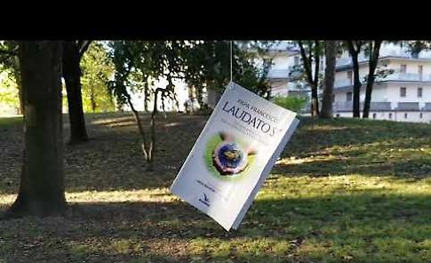 VIDEO Il blitz a Casalmaggiore, sugli alberi del parco cresce l'enciclica Laudato Si