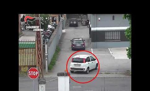 VIDEO L'operazione Donkey dei carabinieri di Cremona