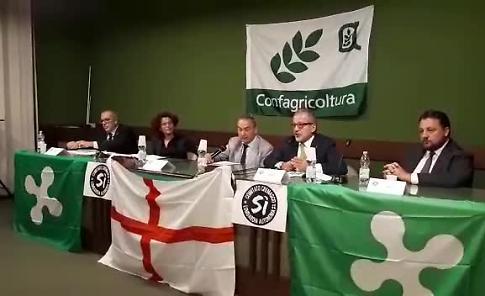 VIDEO Roberto Maroni a Crema per il 'sì'