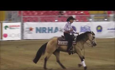 VIDEO Salone del Cavallo Americano a Cremona (25 maggio 2018)