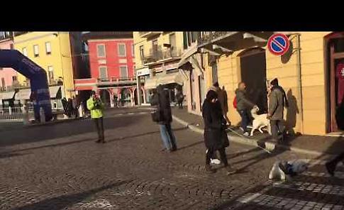 VIDEO Corri con il tuo cane 2017 a Casalmaggiore