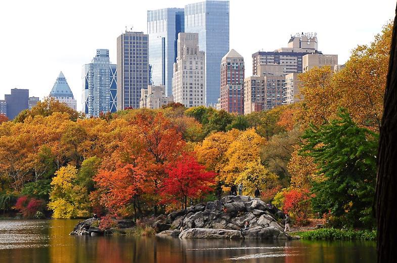 New York, suicida medico 49enne