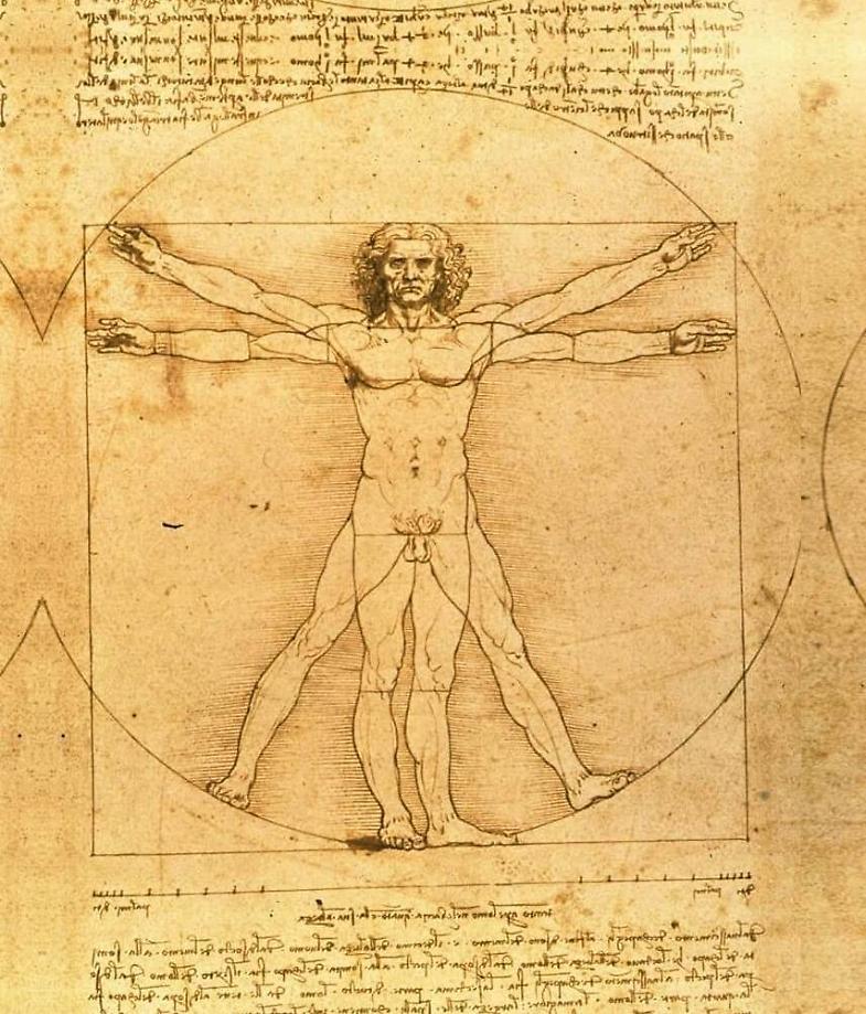 Arte-Leonardo, l'Uomo Vitruviano in prestito a Parigi