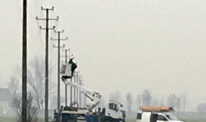Rubati 1,2 chilometri di cavi elettrici, black out di otto ore